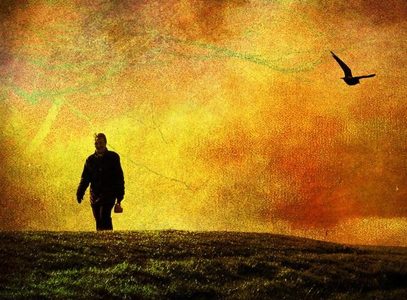 Emergence and Sustained Poise